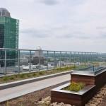 rooftop-garden-4