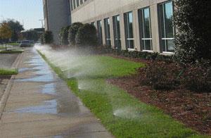 Excess Irrigation Run Off